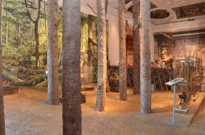 """Ansicht aus der Dauerausstellung in Schloss Trautenfels, Raum """"Wald und Holz""""; Foto: E. Reichenfelser"""