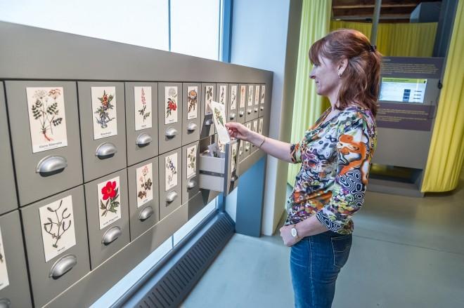 """In der Ausstellung """"Aberglauben - Aberwissen"""", Foto: Universalmuseum Joanneum"""