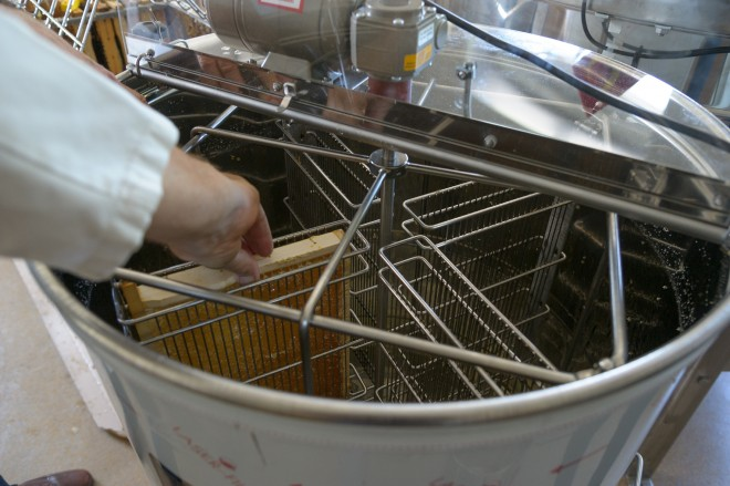 Die Waben werden in die Honigschleuder eingehängt; Foto: N. Lackner