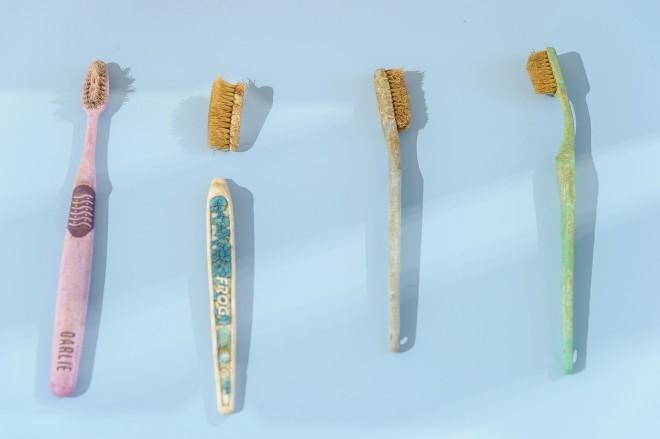 Zahnbürsten, die aus dem Meer gefischt wurden, Ausstellungsansicht, Foto: Universalmuseum Joanneum/N. Lackner