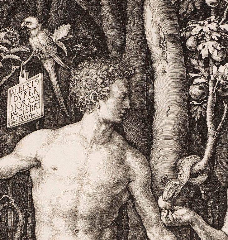 Albrecht Dürer (1471–1528), Adam und Eva (Detail), 1504, Kupferstich, Alte Galerie, Inv.-Nr. AG.K. 1