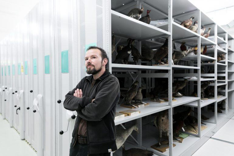 Martin Unruh, geboren 1976 in Gera/Thüringen, ist der einzige Tierpräparator am Universalmuseum Joanneum. Foto: Oliver Wolf