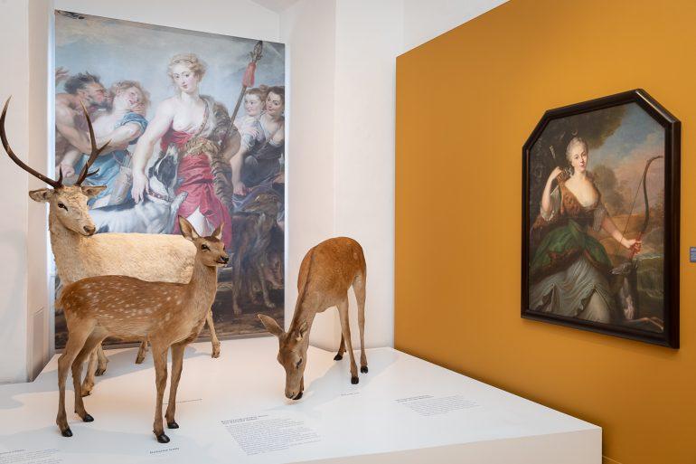 """Rehe und großformatige Bilder vor einem gelben Hintergrund in der Ausstellung """"Die Jagd ist weiblich"""" im Jagdmuseum Schloss Stainz"""