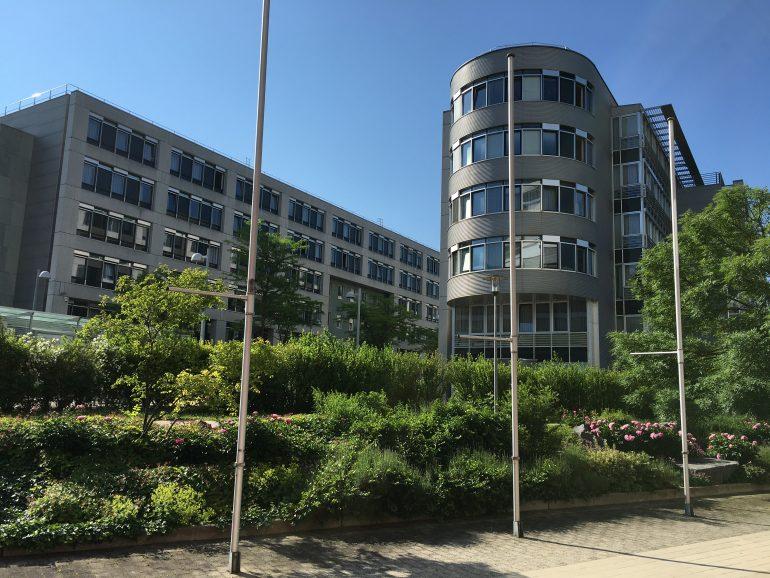 Unter blauem Himmel und hinter grünen Büschen und Bäumen ragt das Gebäude, in dem die Mitarbeiter*innen der Landessammlung und des Museumsmanagements Niederösterreich, die sich mit Sammlungsdigitalisierung beschäftigen, ihre Büros haben, hervor.