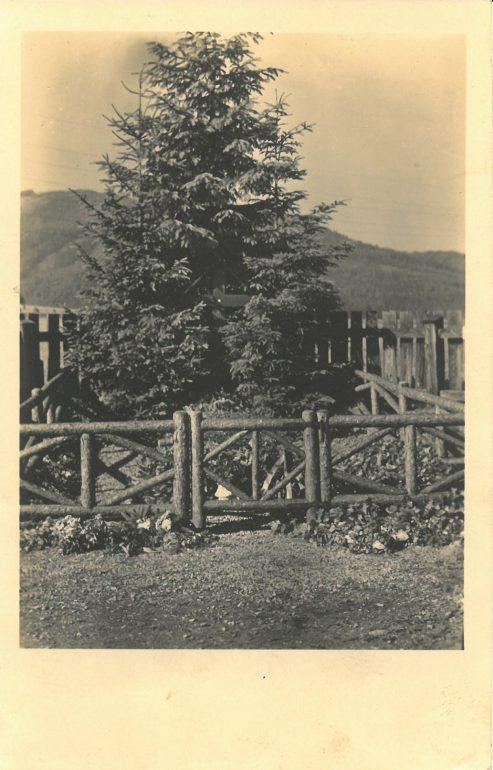 Friedhof, das Grab Roseggers