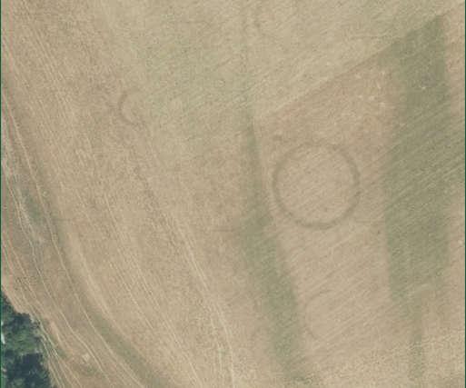 Auf den Luftfotos sind anhand von Bewuchsmerkmalen die Konturen von eingeebneten Grabhügeln zu erkennen,
