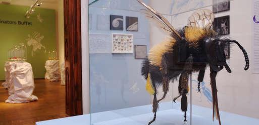 """Ausstellungsansicht """"The Fly"""", 2019,"""