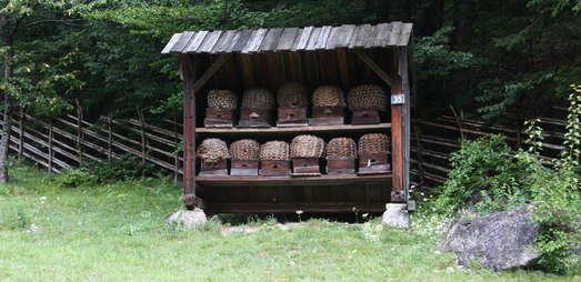 Bienenstand im Österreichischen Freilichtmuseum, © Österreichisches Freilichtmuseum/UMJ
