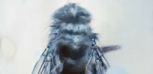 """NataliePort, """"The Fly"""","""